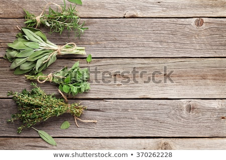 Frescos salvia mesa de madera alimentos hoja planta Foto stock © Kesu