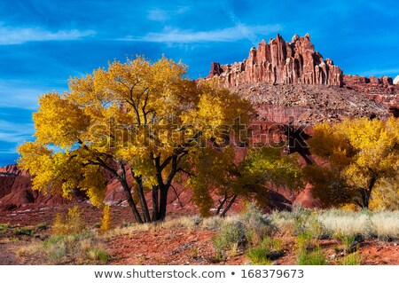 The Castle in Capitol Reef National Park Stock photo © vwalakte