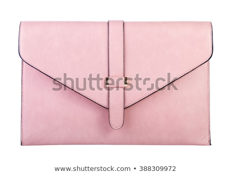 luxury gold leather clutch bag stock photo © discovod