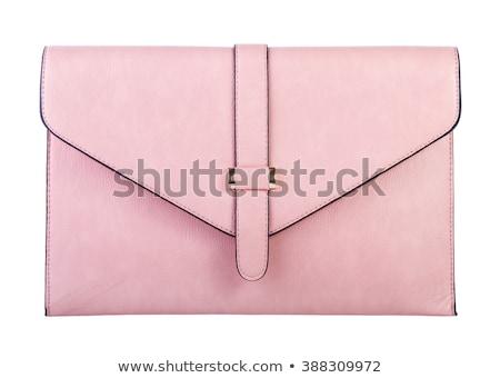 kuplung · táska · elegáns · terv · modern · nők - stock fotó © discovod