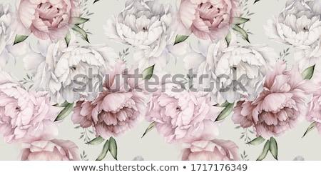 Növényvilág tapéta virág papír fal fény Stock fotó © zzve