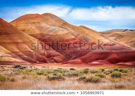 Pintado hills Oregon colorido ver vermelho Foto stock © pictureguy
