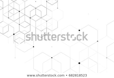 Abstract scatole sfondo finestra web gruppo Foto d'archivio © SSilver
