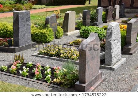 Cementerio flores americano hierba verde muertos Foto stock © meinzahn