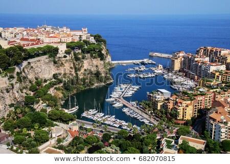 Marina modern binalar Monaco görmek tekneler Stok fotoğraf © rglinsky77