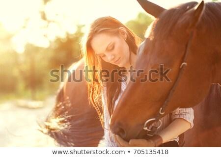 かなり 若い女性 ポニー 白 女性 ストックフォト © konradbak