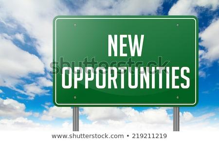 new opportunities on highway signpost stock photo © tashatuvango