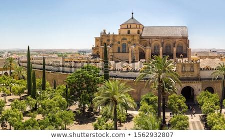 Gardens at the Alcazar, Cordoba, Spain Stock photo © neirfy