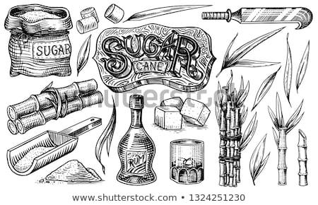 Sugar Cubes On A White Plate Stock photo © Cipariss