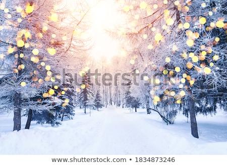 noite · cityscape · natal · cartão · postal · projeto · queda - foto stock © netkov1