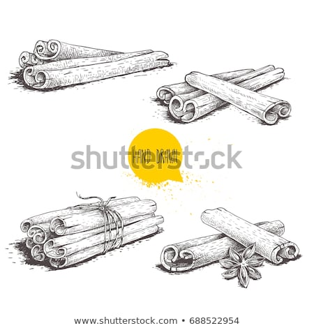 Bunch of cinnamon sticks tied with twine Stock photo © Valeriy
