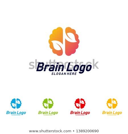 Cérebro assinar logotipo modelo projeto Foto stock © antoshkaforever
