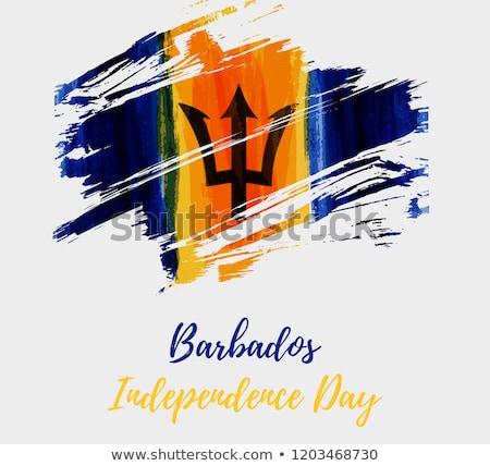 vierkante · icon · vlag · Barbados · schaduw · teken - stockfoto © mikhailmishchenko