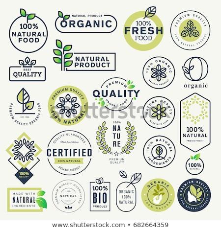 Certifié vert vecteur icône design noir Photo stock © rizwanali3d