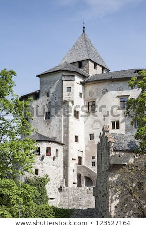 Proesels castle Stock photo © LianeM