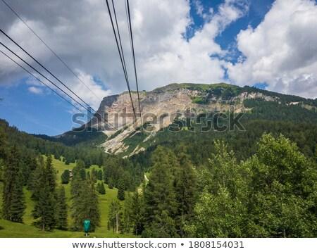 Seceda ropeway to the mountain Stock photo © LianeM