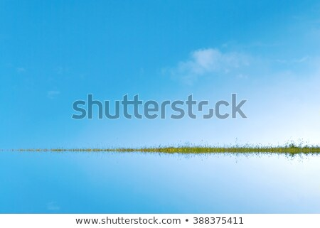 Sky and Water Divided by Grassy Landstrip Stock photo © frannyanne