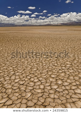 Large field of baked earth after a long drought Stock photo © rufous