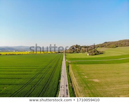 Asfalt yol alan mavi gökyüzü yaz gün Stok fotoğraf © ssuaphoto