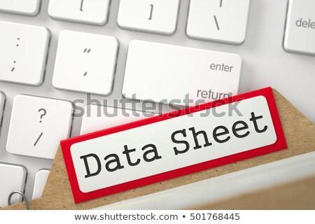 Data Sheet on File Folder. Toned Image. Stock photo © tashatuvango