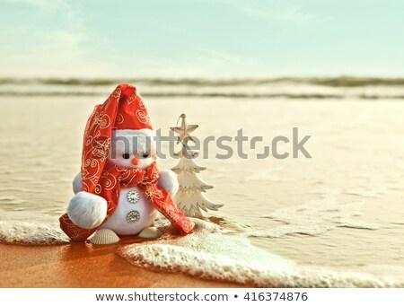 Noel · Avustralya · yaz · ay · açık · havada · plaj - stok fotoğraf © lovleah