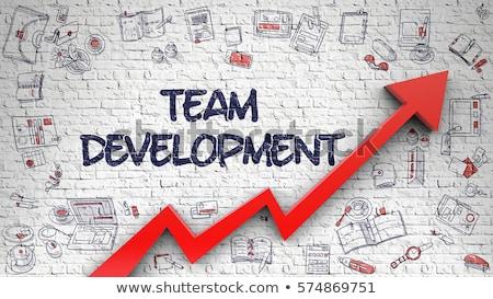 Training Development Drawn on White Brick Wall. 3d Stock photo © tashatuvango