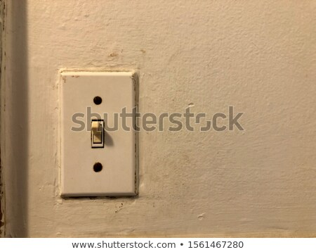 Vintage light switch Stock photo © IS2