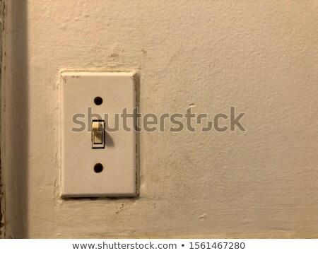 Vintage lichtschakelaar energie elektriciteit controle Stockfoto © IS2