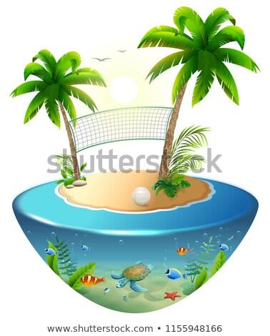волейбол чистой ладонями мяча Тропический остров изолированный Сток-фото © orensila