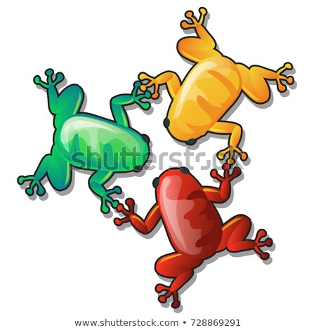 Three funny colorful frogs or toads hold each others paws isolated on white background. Vector carto Stock photo © Lady-Luck