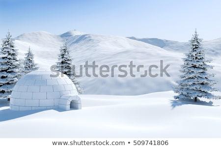 Neve iglu montanhas inverno paisagem abrigo Foto stock © Kotenko
