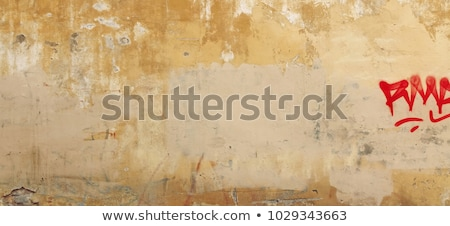 Wall with wallpaper is painted in brown  Stock photo © Kotenko