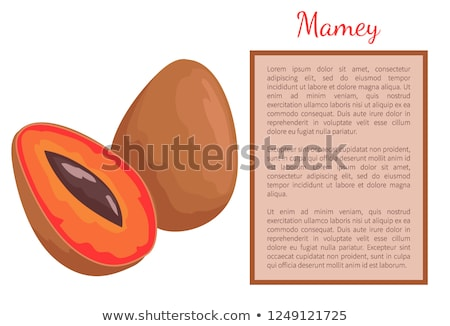 Mamey Exotic Juicy Fruit Vector Poster Frame Text Stock photo © robuart