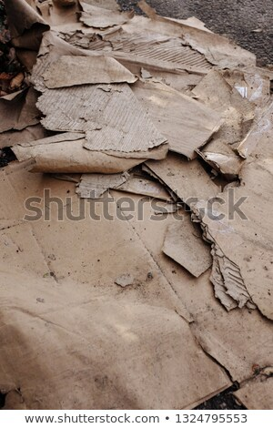 Dumped, dirty and ripped corrugated cardboard Stock photo © sarahdoow