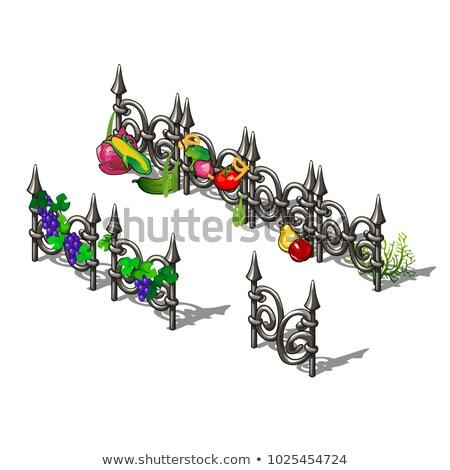 Ingesteld communie metaal hek rijp groenten Stockfoto © Lady-Luck