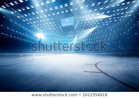 Jégkorong illusztráció férfi hó jég tél Stock fotó © adrenalina
