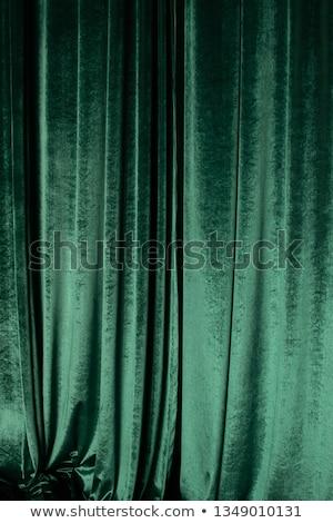 Zielone kurtyny teatr 3D świadczonych ilustracja Zdjęcia stock © bayberry