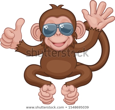 monkey sunglasses waving thumbs up cartoon animal stock photo © krisdog