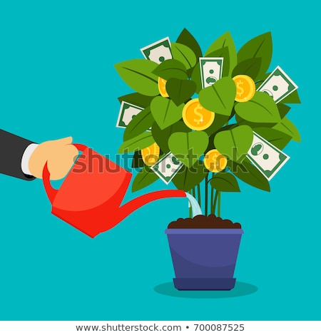 Money Tree, Growth Currency, Man Invest Vector Stock photo © robuart