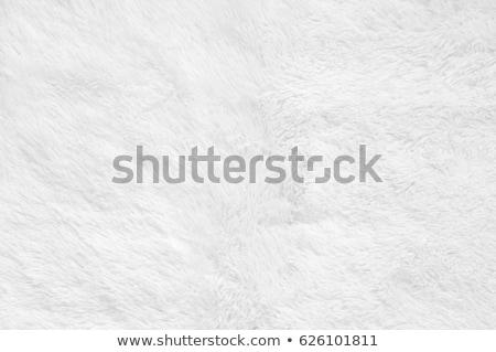 fluffy fabric texture stock photo © foka