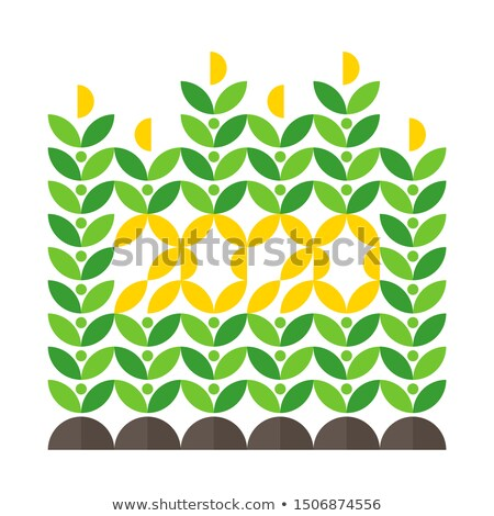 happy new year greeting card with corn crop and 2020 lettering stock photo © ussr