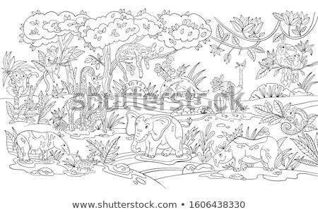Rajzolt állat karakter kifestőkönyv oldal feketefehér rajz Stock fotó © izakowski