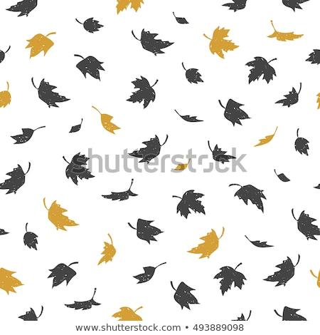 падение листьев бесшовный вектора шаблон листва Сток-фото © barsrsind