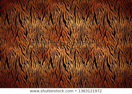 реалистичный тигр кожи текстуры черный Сток-фото © evgeny89
