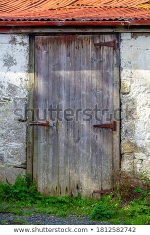Oud hout deur muur oude verweerde groene Stockfoto © bobkeenan
