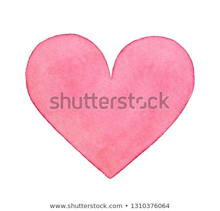 pale pink rose symbol of love and affection Stock photo © sherjaca