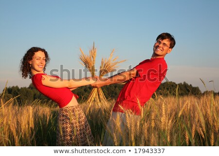 pair keeps for hands wheaten field stock photo © paha_l