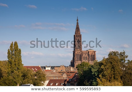 Cathedral Notre Dame, Strasbourg, Alsace, France Stock photo © phbcz