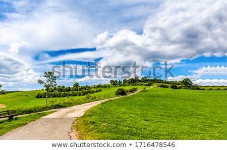 Yeşil Manzara Yol Gökyüzü Sanat Boyama Vektör