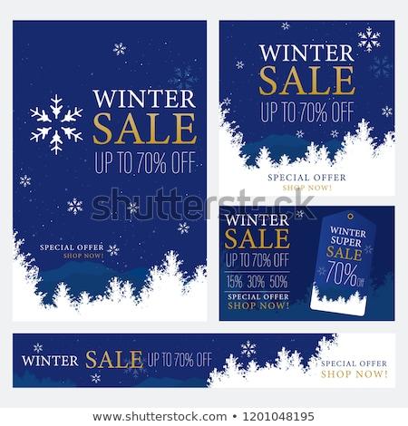 winter promotion snowflake label stock photo © marinini
